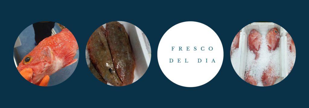 Pescados frescos de las lonjas gallegas